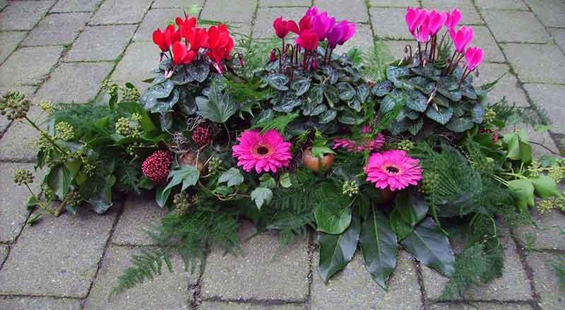 ellen-deelen-natuurlijke-bloem-creaties-kistversiering-3