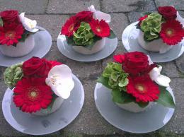 ellen-deelen-natuurlijke-bloem-creaties-set-bloementaartjes