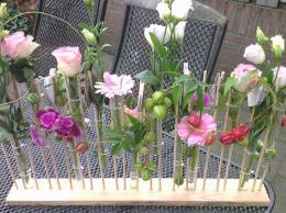 ellen-deelen-natuurlijke-bloem-creaties-vrolijk-lijnenspel-met-reageerbuisjes-€-29,50