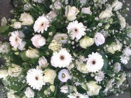 Ellen Deelen natuurliijk bloem-creaties graftoef wtte gerbera