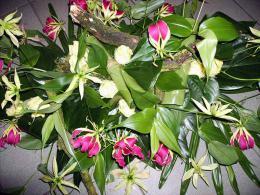 ellen-deelen-natuurlijke-bloem-creaties-detail-graftoef-stronken-en-gloriosa