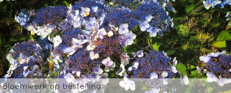ellen-deelen-natuurlijke-bloem-creaties-achtergrond-bloemwerk-op-bestelling-header